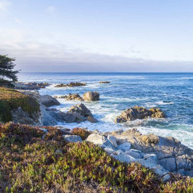 California Experience